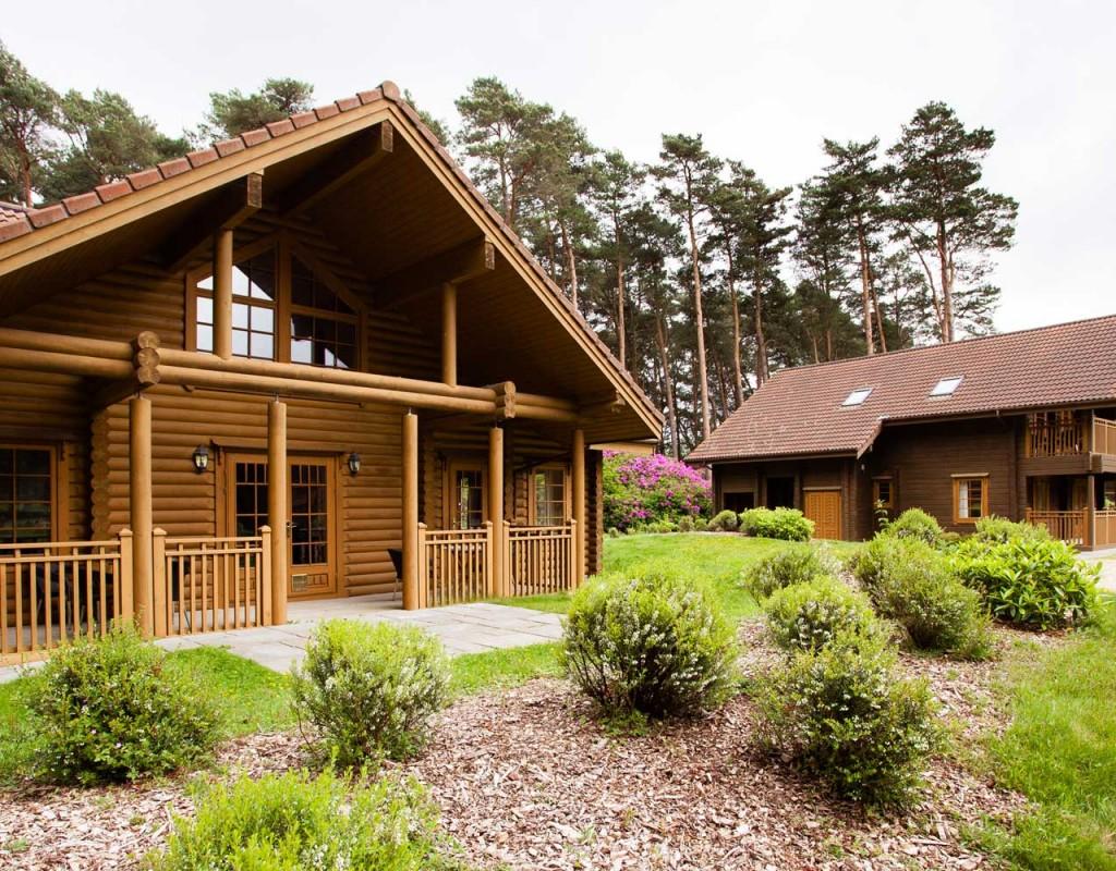 Totul despre casele de lemn
